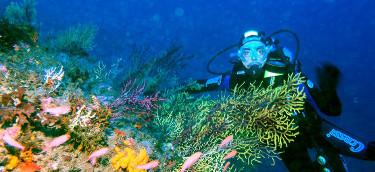 Buceo y submarinismo en Sicilia