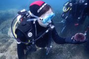 diving 25